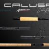 Heavy action fishing rod